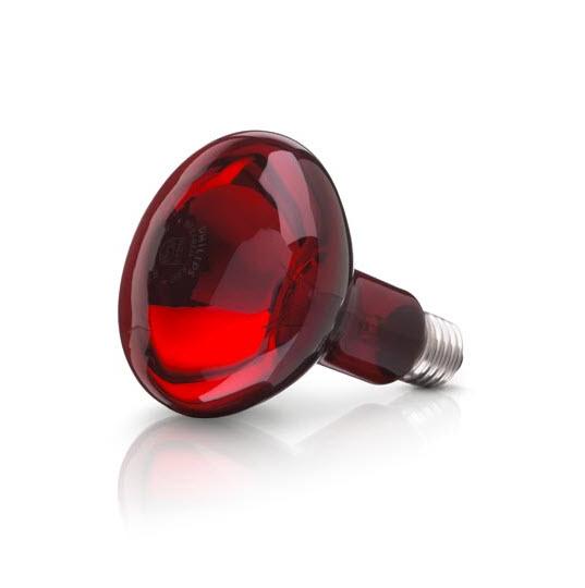Bóng đèn hồng ngoại OSRAM Đức